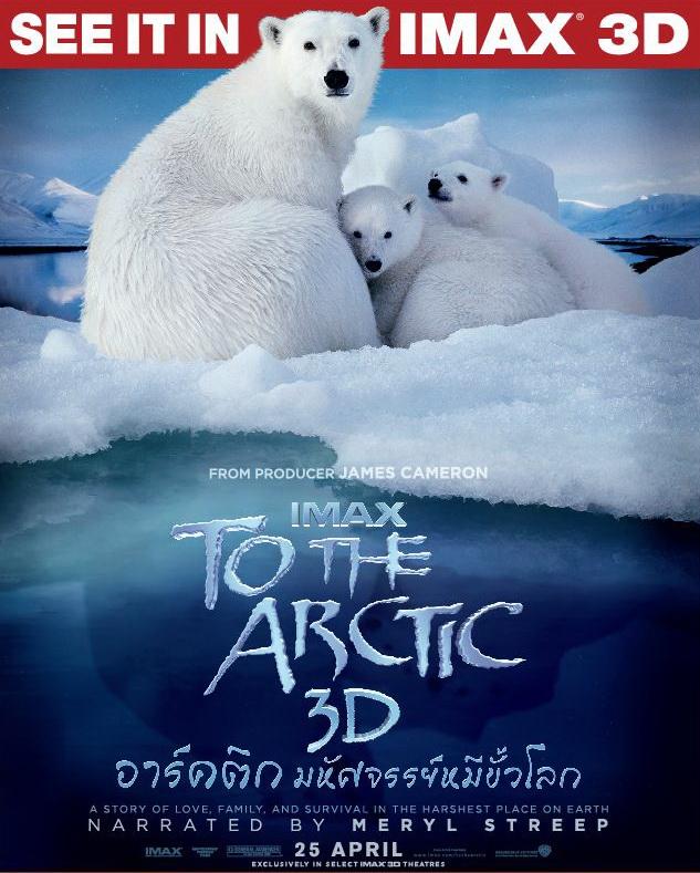 อัศจรรย์ หมีขั้วโลก To The Arctic